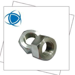 Hex Nuts DIN934