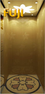 Villa Elevator Golden Yellow Home Elevator / Lift pictures & photos