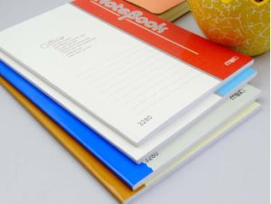 Best Quality of Executive Diary/ Executive/ Notebooks pictures & photos