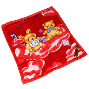 Spring and Summer Children Raschel Blanket Cover pictures & photos