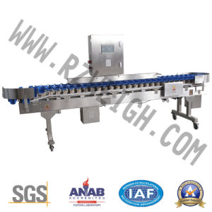 Automatic 7 High Precision SUS 304 Grading Machine pictures & photos