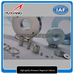 High Quality Permanent Magnet for Industry pictures & photos