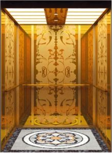 AC Vvvf Gearless Drive Passenger Elevator Without Machine Room (RLS-229) pictures & photos