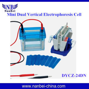 2016 Best Seller DNA Sequencing Electrophoresis Equipment  for Check Birds Sex pictures & photos
