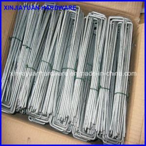 High Quality Fabric or Grass Fence Staple, Plain Staple, Black SOD Staple, Eg Staple pictures & photos