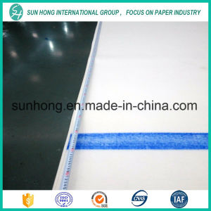 Press Felt for Paper Making Industry pictures & photos