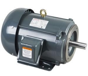 CSA/Cus Cetified NEMA Pump Motor pictures & photos