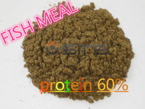 Hot Sale-Fish Meal with High Protein for Animal Feed pictures & photos