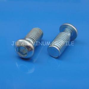 Hex Socket Button Head Cap Screw M14 pictures & photos