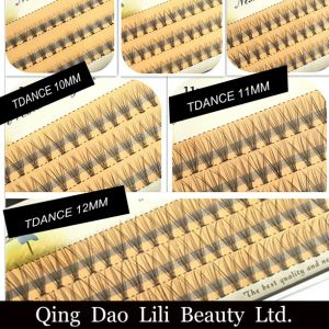 Lili Beauty Volume Eyelash 8mm 12mm Individual False Cluster Eye Lash Extension Private Label Tray Kit pictures & photos