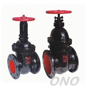 Cast Iron Flange Type Gate Valve RF FF pictures & photos