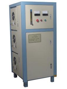 Ozone Generator (CFY-75) pictures & photos