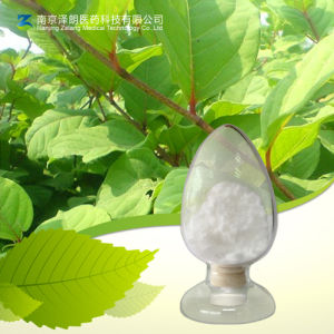 Factory Specialized in Producing Natural 50% 98% Resveratrol pictures & photos