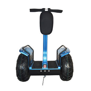 2015 Newest 2 Wheel Self Balancing Adult Electric Scooters pictures & photos