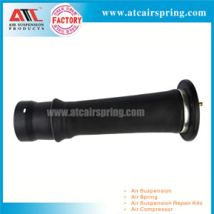 Rear Air Bag of Air Suspension for Land Rover Discovery2 Rkb101200 pictures & photos