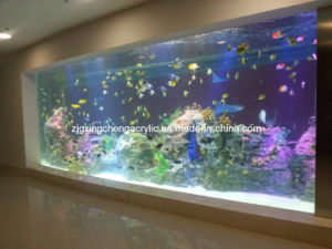 Acrylic Panels for Aquariums/Acrylic Manufacturers pictures & photos