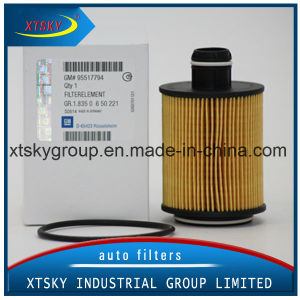 China Auto Oil Filter 95517794 pictures & photos