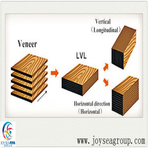 PVC Edge Banding for Furniture 0.45*16mm pictures & photos