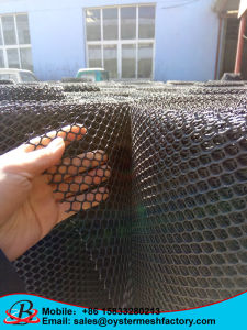 China Plastic Mesh with Rhinestone