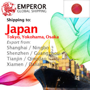 Sea Freight Shipping From China to Japan