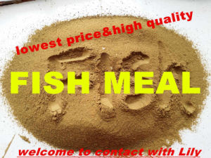 Fish Meal with Lowest Price (protein 72% and 75%) pictures & photos