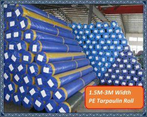 1.5m-3m Width PE Tarpaulin in Roll pictures & photos