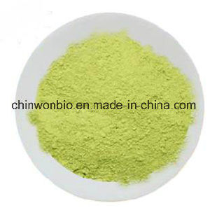 Instant Green Tea Powder for Beverages