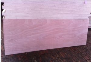 Factory-Mahogany Door Skin Size Plywood Poplar Core 2.7mm-5mm pictures & photos