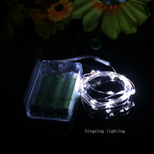 2 M Length 20 LED Copper Wire LED String Lights