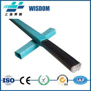 Wisdom Brand Good Quality Erni-1 Is Used for The Welding of Nickel 200 and 201 pictures & photos