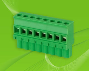Pluggable Terminal Block for Instruments Components pictures & photos
