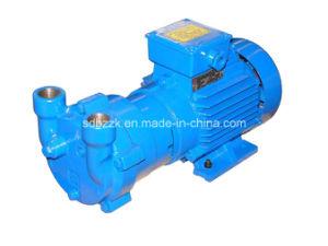 One Stage Water Ring Vacuum Pump (2BV2061, Price)
