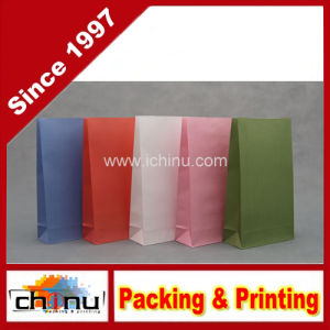 Color Printing Kraft Paper Bag (2120) pictures & photos