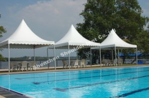 The Newest 4X4 Canopy Tent for Sale pictures & photos