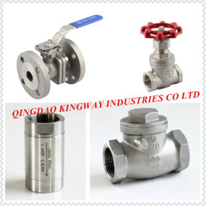 Stainless Steel Threaded Swing Check Valve, pictures & photos