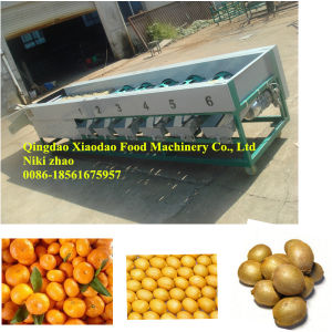 Automatic Fruit and Vegetable Sorting and Grading Machine pictures & photos