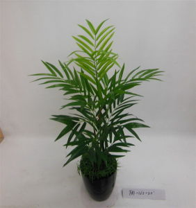 Best Selling Artificial Plants of Palm Faf-162-2.5′ pictures & photos