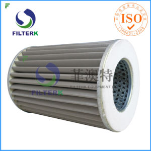 Pleated Natural Gas Filter pictures & photos