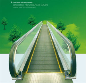 Fjzy Moving Walkway--- Inclination 12 Degree, 0.5m/S pictures & photos