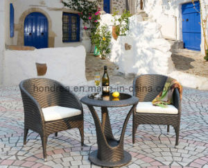 Rattan Garden Furniture (HR-D61)