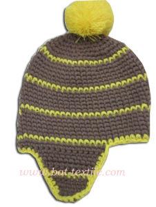 Fashion Hat Bat-H05 pictures & photos