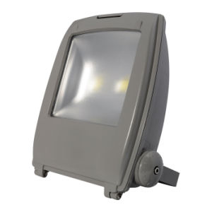 New Park Gym Outdoor 100W COB LED Flood Light pictures & photos