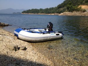 2.9m Inflatable Boat with Aluminum Floor (FWS-D290) pictures & photos