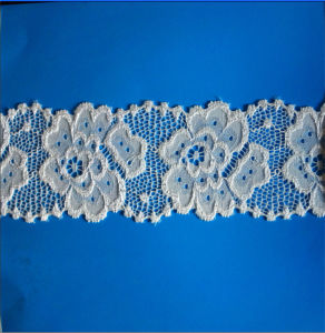 Tricot Lace for Underwear (59A21) pictures & photos