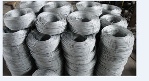 Hot DIP Galvanized Steel Wire Rope 1X7 with Coil Packing pictures & photos
