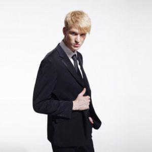 Men′s Business Suit Evening Suit Party Suit (W0455)