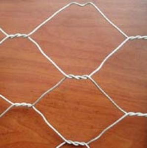 Building Materials Galvanized Hexagonal Wire Mesh Netting (Anjia-105) pictures & photos