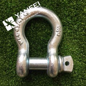 G2150 Us Type Bolt Anchor Shackle, D Shackles pictures & photos