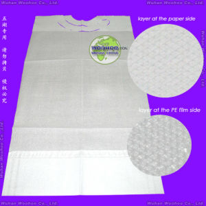 Disposable PP+PE Bib pictures & photos