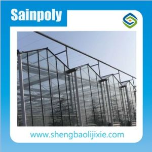 High Quality Glass/Plastic/Film Greenhouse Material Low Cost Greenhouse pictures & photos